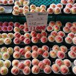 7月2日(日)はまテラスフェスティバル出店者のご紹介です!