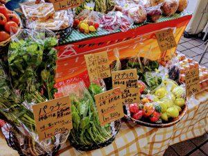 10月22日(日)はまテラスフェスティバル出店者のご紹介です!