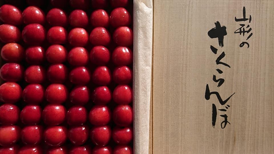 1月14日(日)はまテラスフェスティバル出店者のご紹介です!